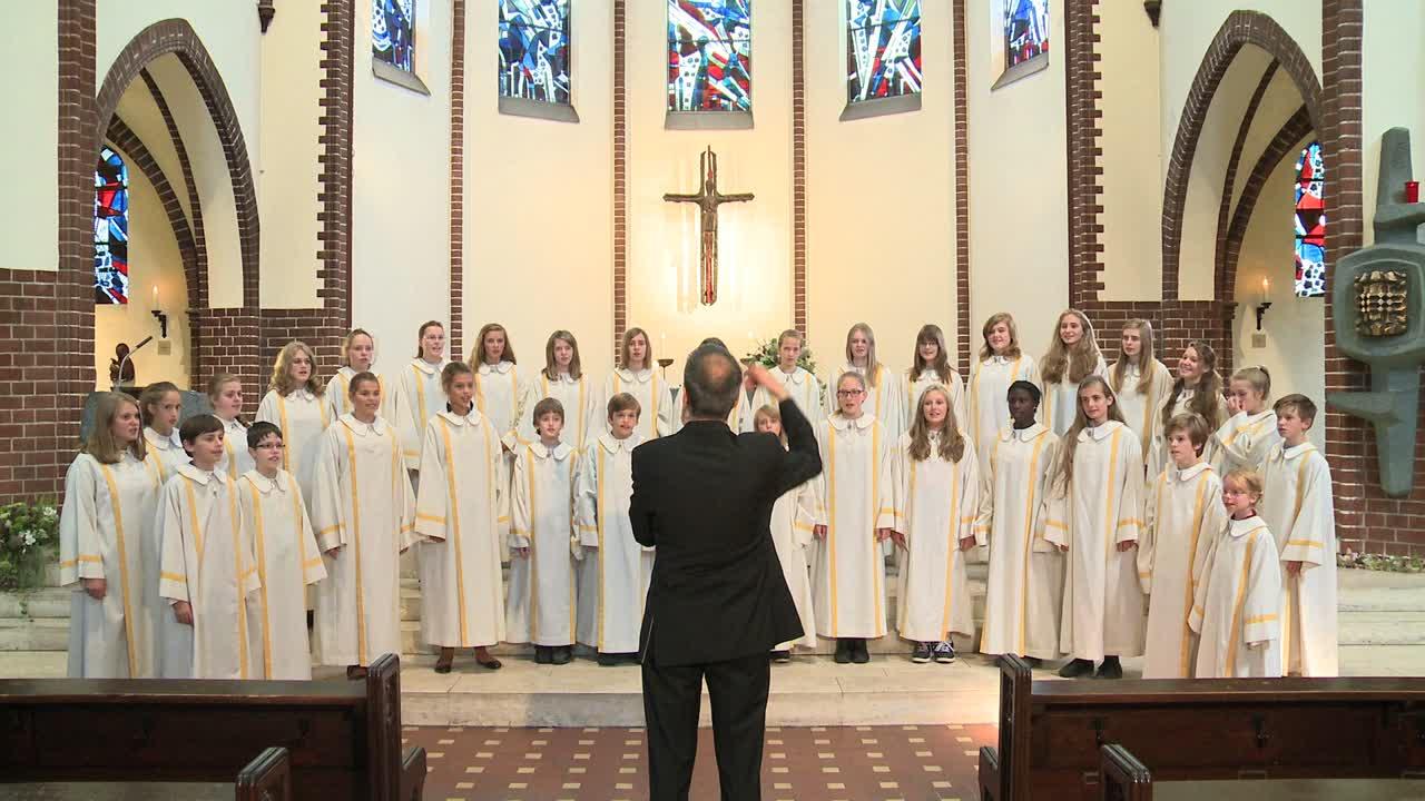 Gotteslobvideo (GL 280): Singt dem König Freudenpsalmen